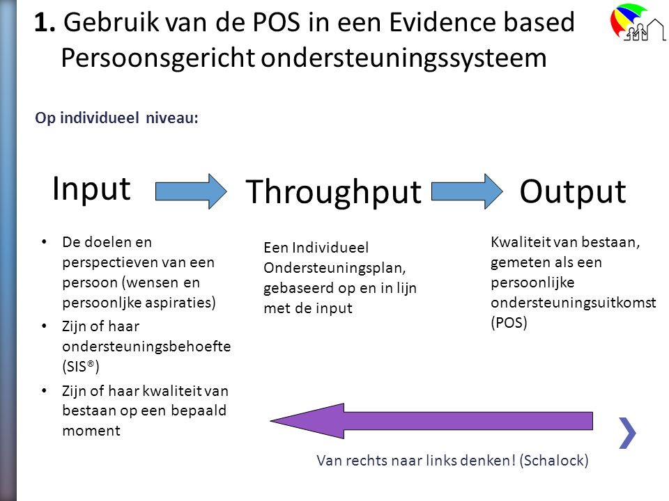 Input Throughput Output 1. Gebruik van de POS in een Evidence based