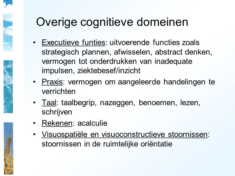Overige cognitieve domeinen