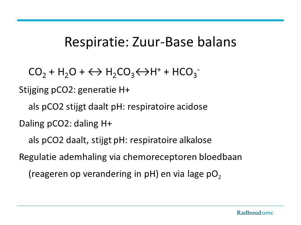 Respiratie: Zuur-Base balans