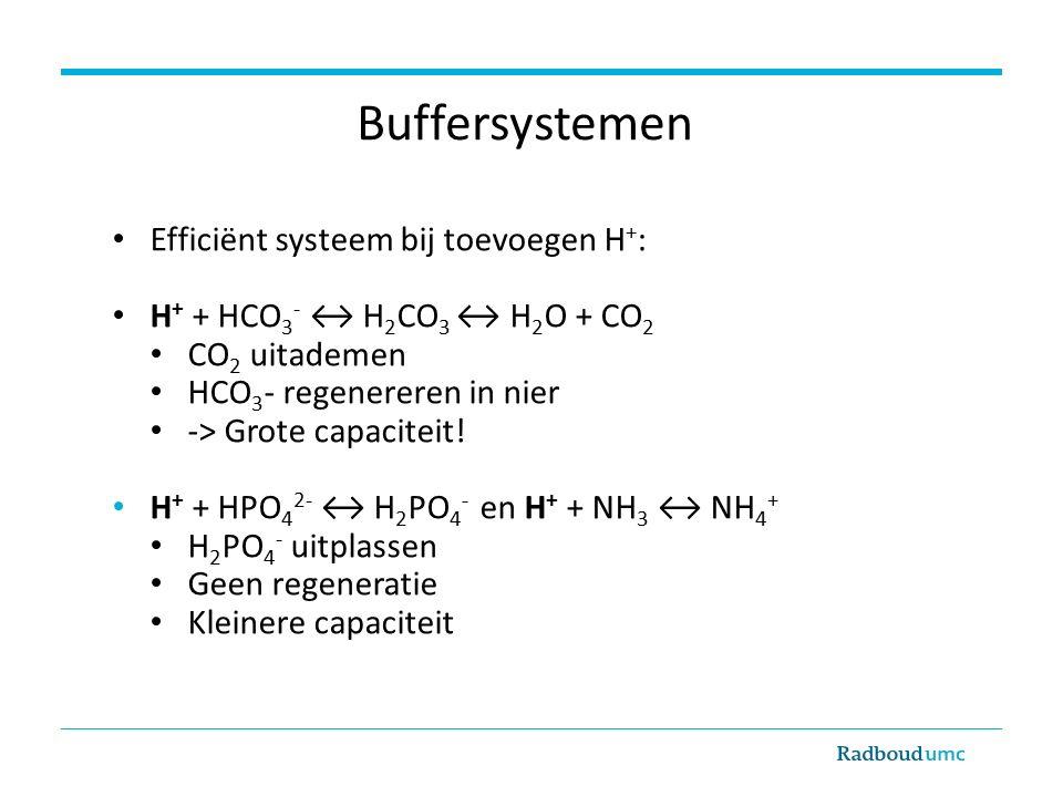 Buffersystemen Efficiënt systeem bij toevoegen H+: