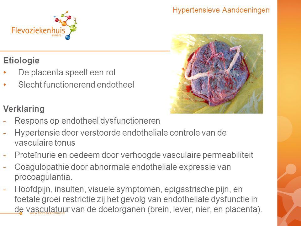 De placenta speelt een rol Slecht functionerend endotheel Verklaring