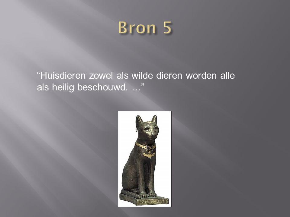 Bron 5 Huisdieren zowel als wilde dieren worden alle als heilig beschouwd. …