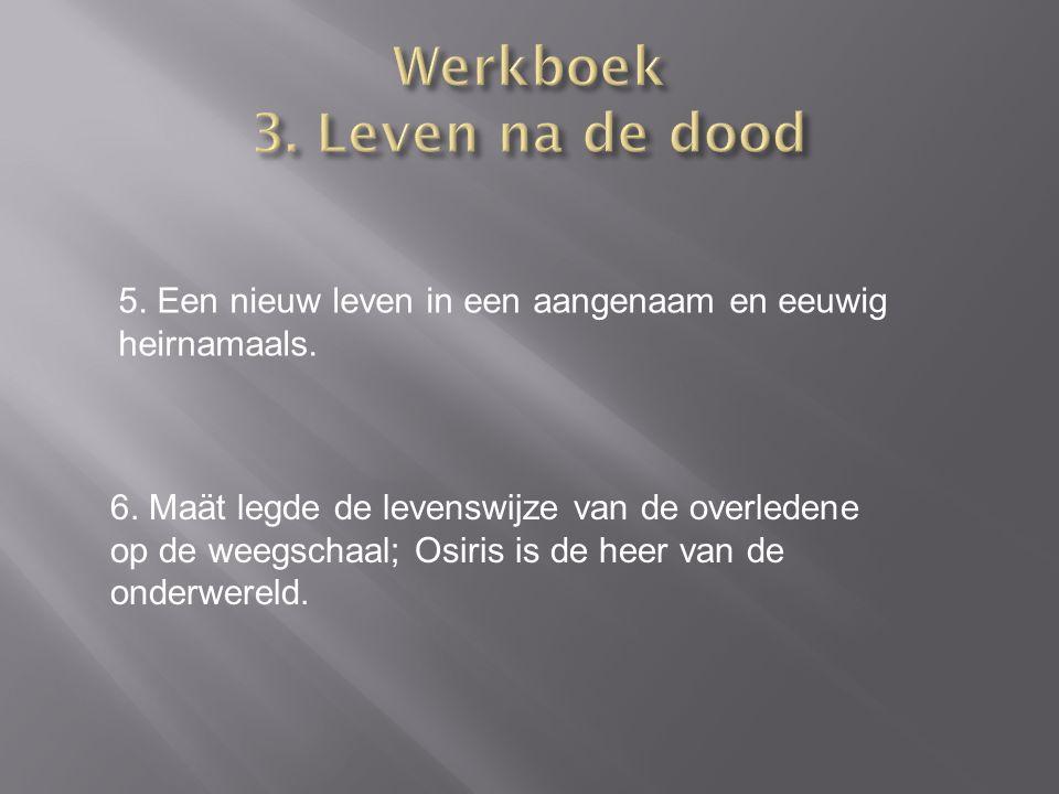 Werkboek 3. Leven na de dood