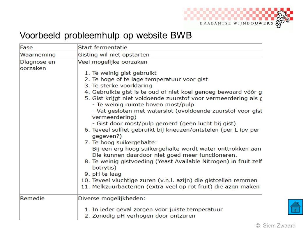Voorbeeld probleemhulp op website BWB