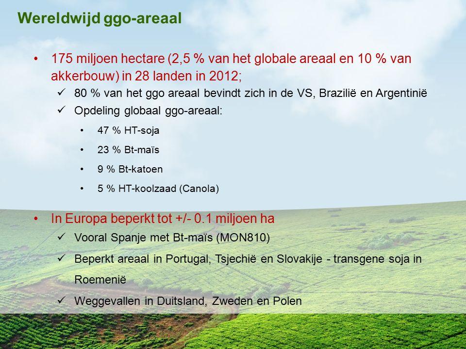 Wereldwijd ggo-areaal
