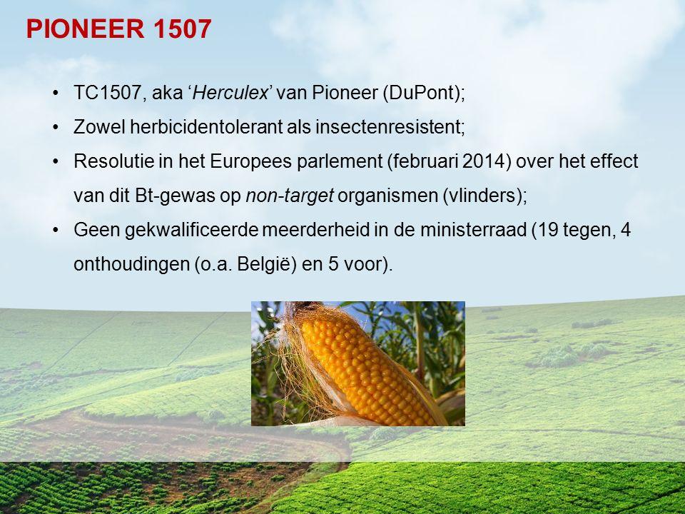 PIONEER 1507 TC1507, aka 'Herculex' van Pioneer (DuPont);