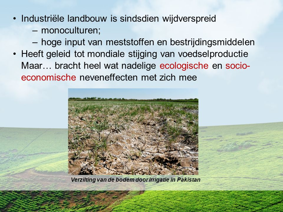 Industriële landbouw is sindsdien wijdverspreid monoculturen;