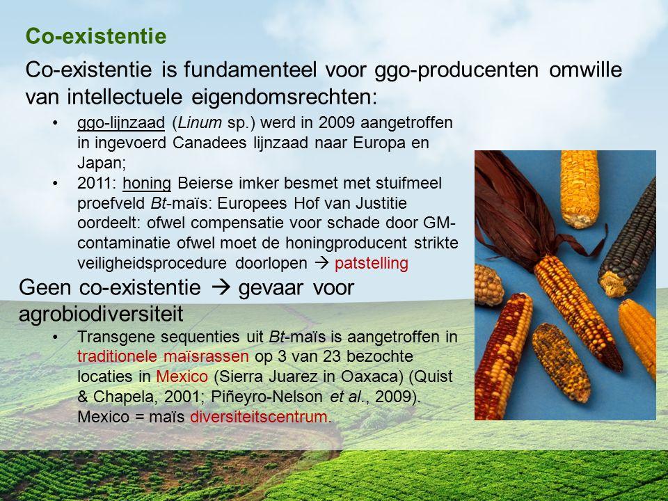 Geen co-existentie  gevaar voor agrobiodiversiteit