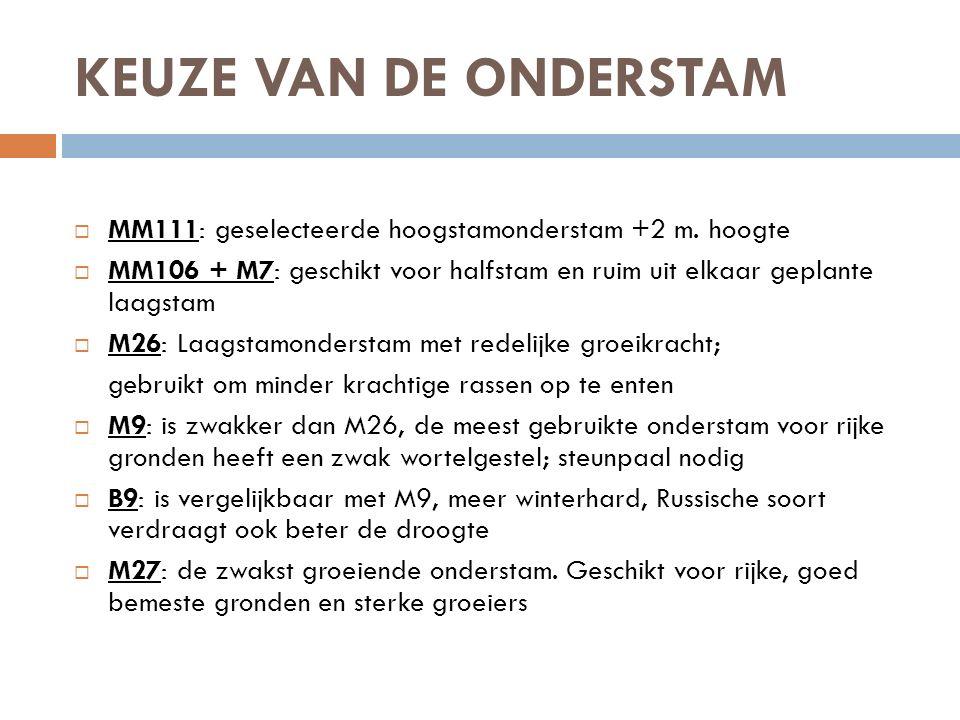 KEUZE VAN DE ONDERSTAM MM111: geselecteerde hoogstamonderstam +2 m. hoogte. MM106 + M7: geschikt voor halfstam en ruim uit elkaar geplante laagstam.