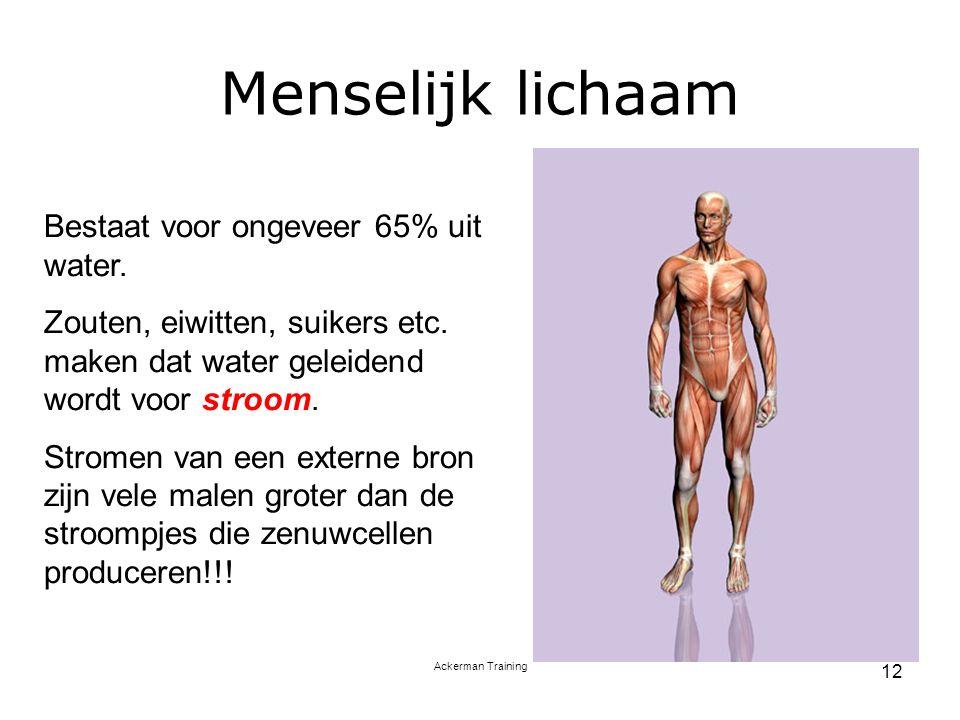 Menselijk lichaam Bestaat voor ongeveer 65% uit water.