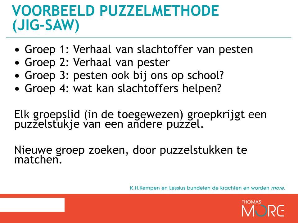 Voorbeeld puzzelmethode (Jig-saw)