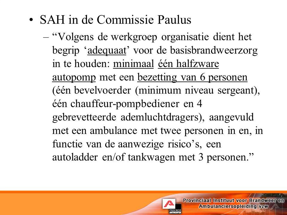SAH in de Commissie Paulus