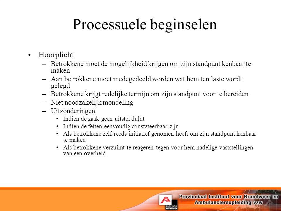Processuele beginselen