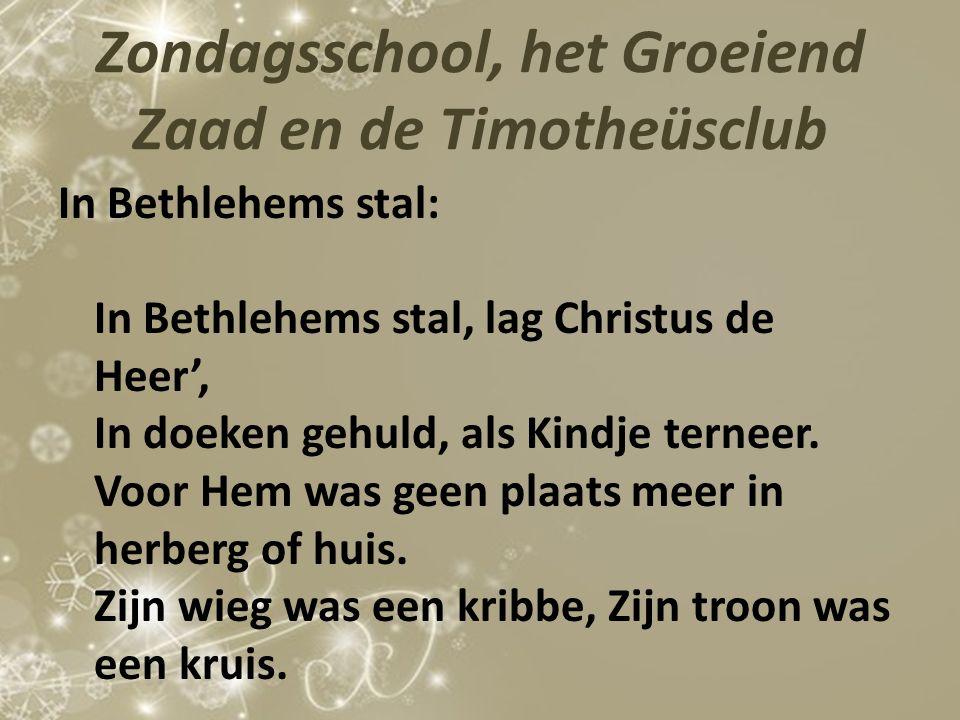 Zondagsschool, het Groeiend Zaad en de Timotheüsclub