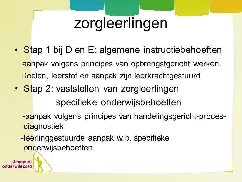 zorgleerlingen Stap 1 bij D en E: algemene instructiebehoeften
