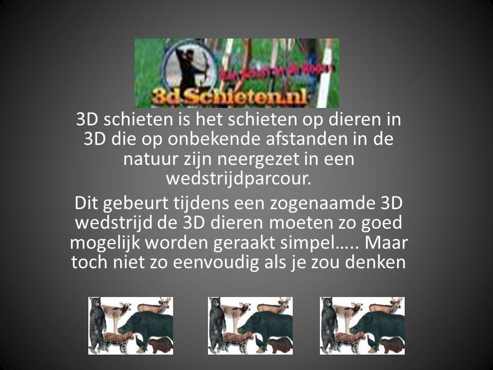 3D schieten is het schieten op dieren in 3D die op onbekende afstanden in de natuur zijn neergezet in een wedstrijdparcour.