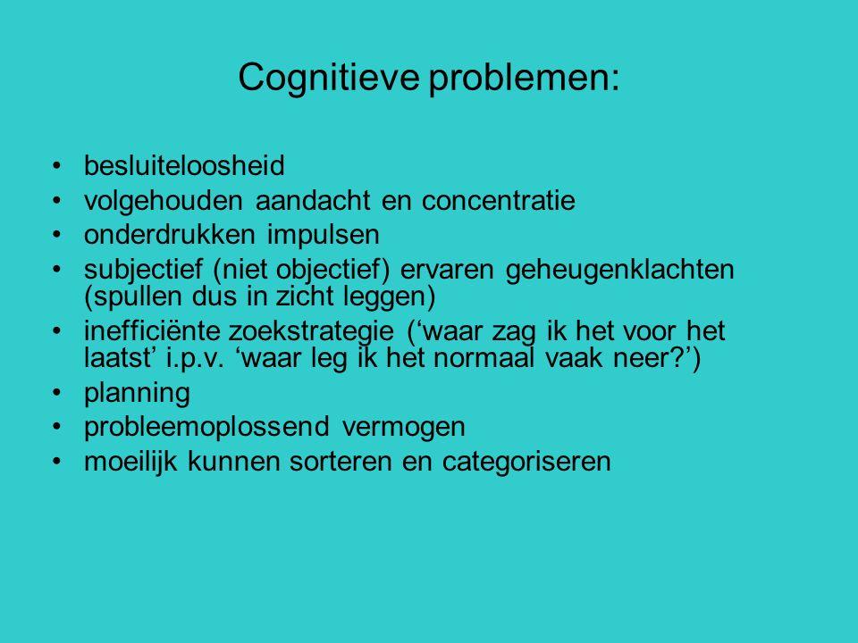 Cognitieve problemen: