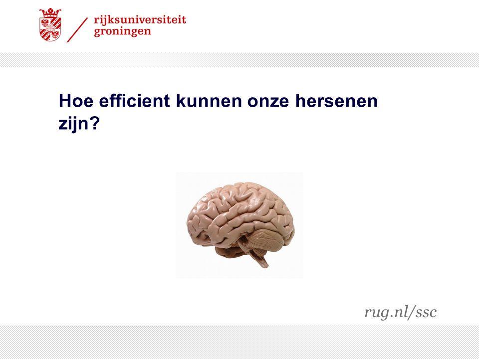 Hoe efficient kunnen onze hersenen zijn