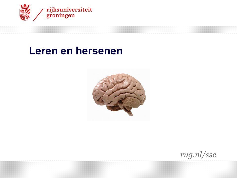 Leren en hersenen rug.nl/ssc 19