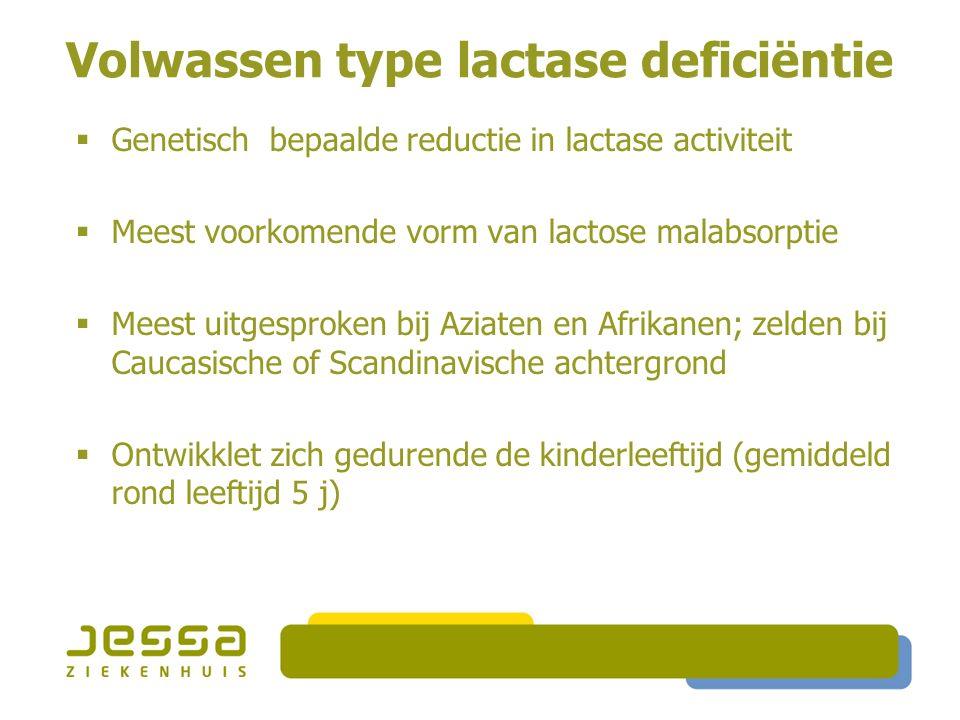 Volwassen type lactase deficiëntie