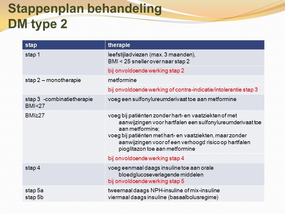 Stappenplan behandeling DM type 2