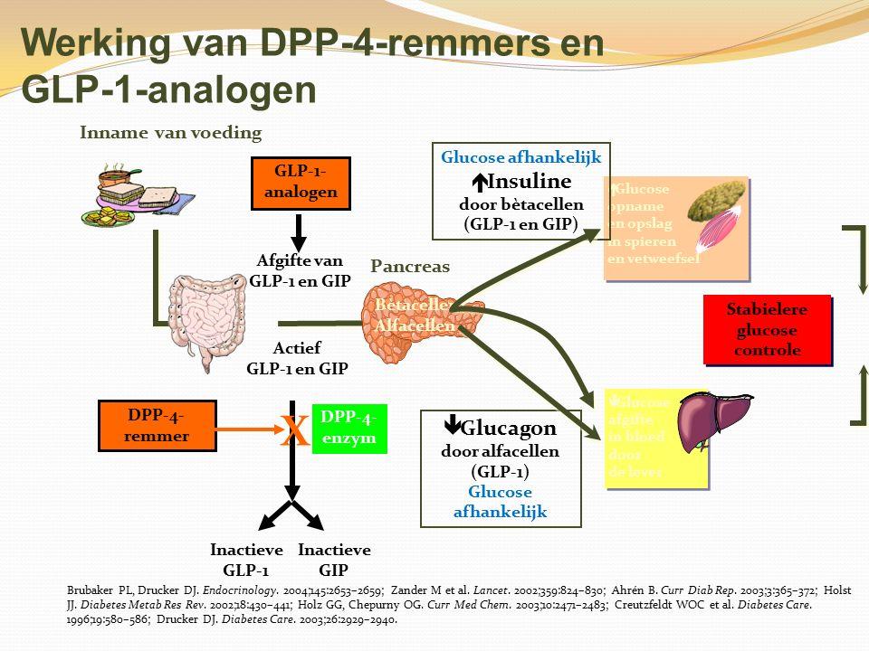 Werking van DPP-4-remmers en GLP-1-analogen