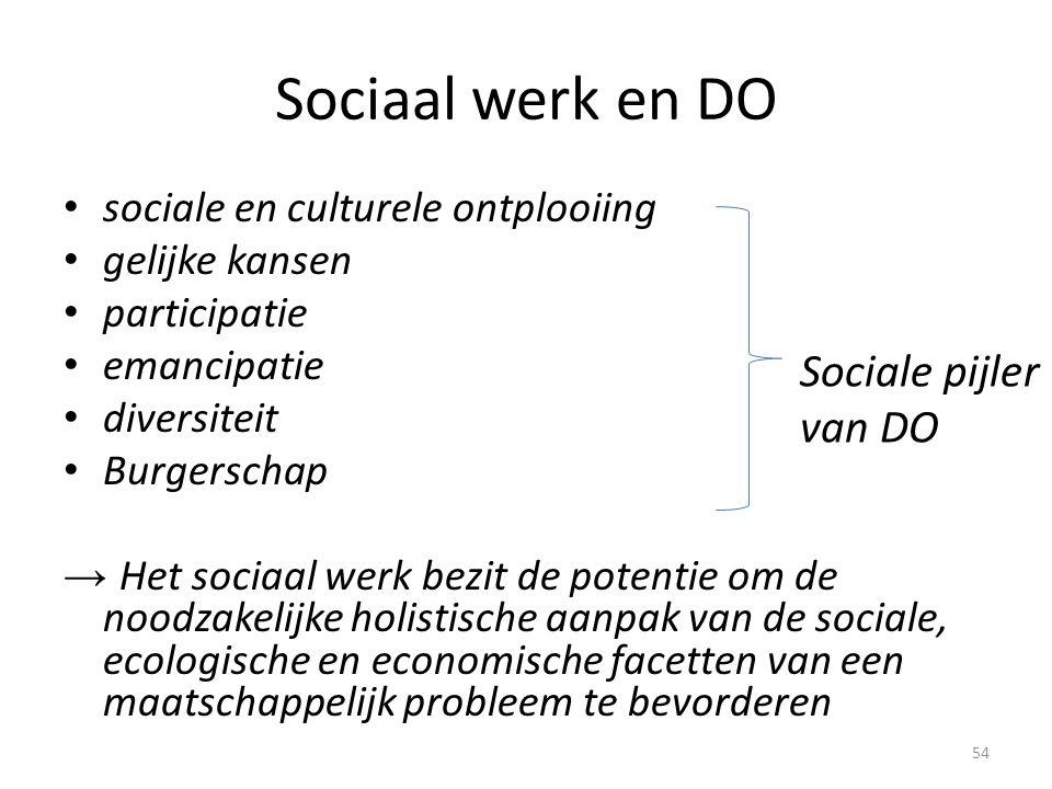 Sociaal werk en DO Sociale pijler van DO