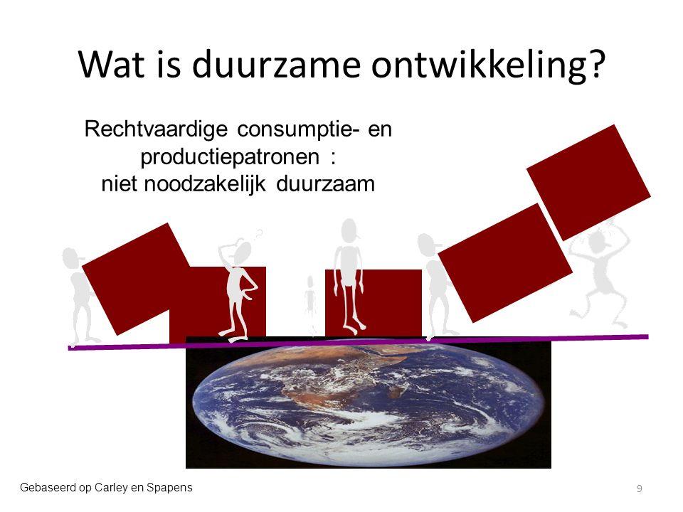 Wat is duurzame ontwikkeling