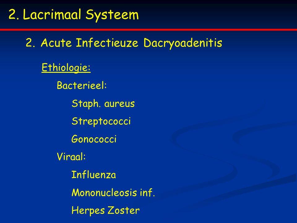 Lacrimaal Systeem Acute Infectieuze Dacryoadenitis Ethiologie: