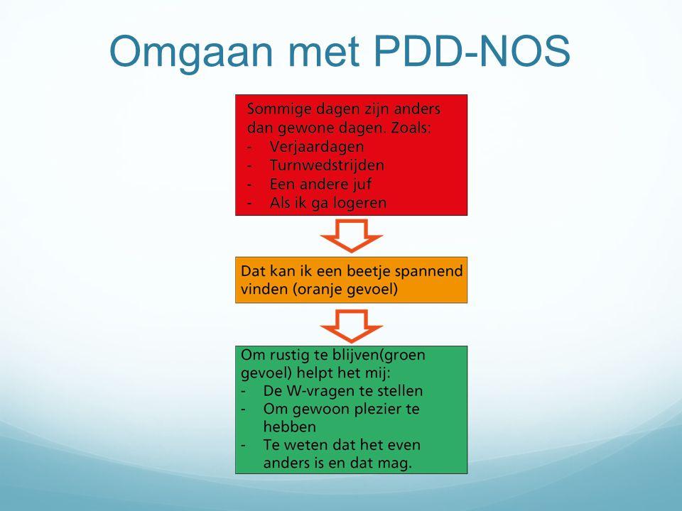 Omgaan met PDD-NOS