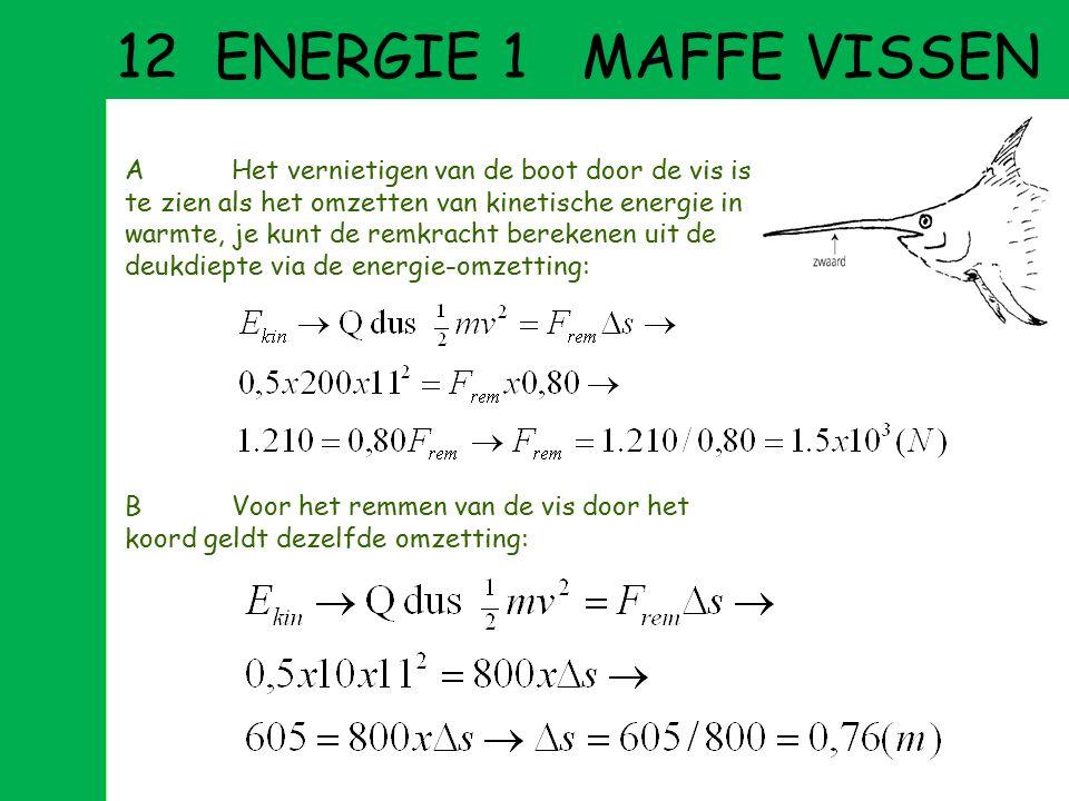 12 ENERGIE 1 MAFFE VISSEN