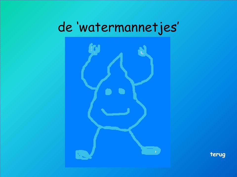de 'watermannetjes' terug