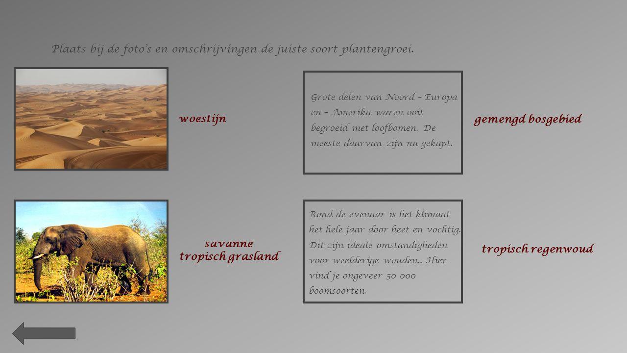 Plaats bij de foto's en omschrijvingen de juiste soort plantengroei.