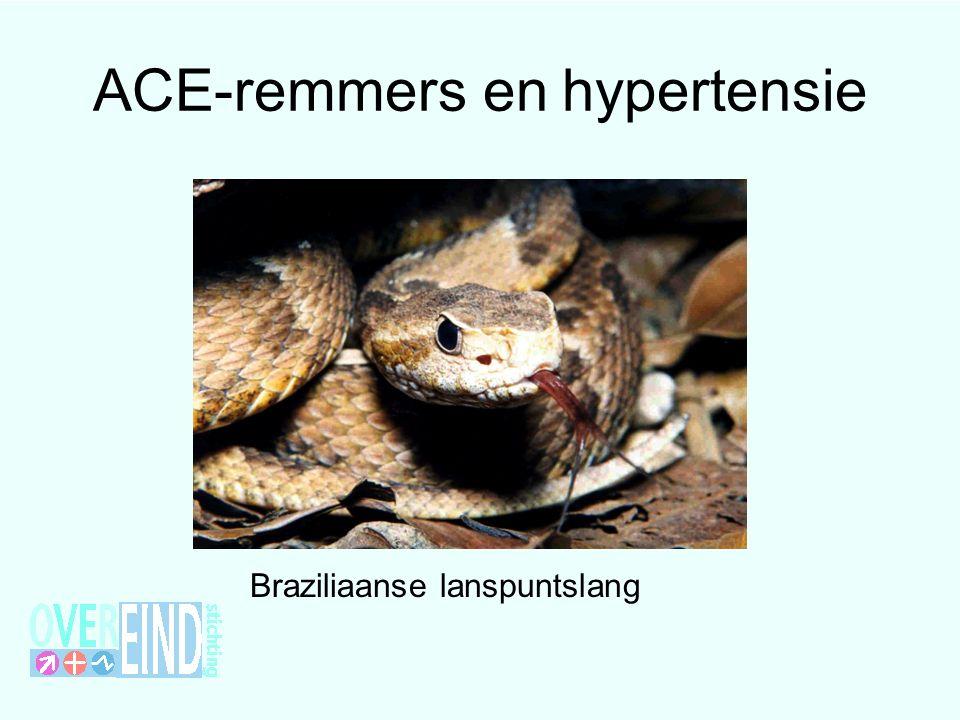 ACE-remmers en hypertensie