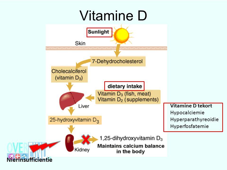 Vitamine D Nierinsufficientie Vitamine D tekort Hypocalciemie