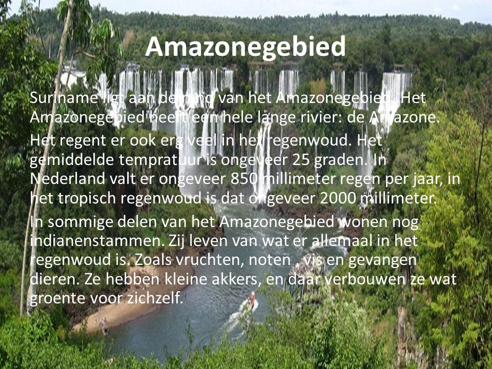 Amazonegebied Suriname ligt aan de rand van het Amazonegebied. Het Amazonegebied heeft een hele lange rivier: de Amazone.