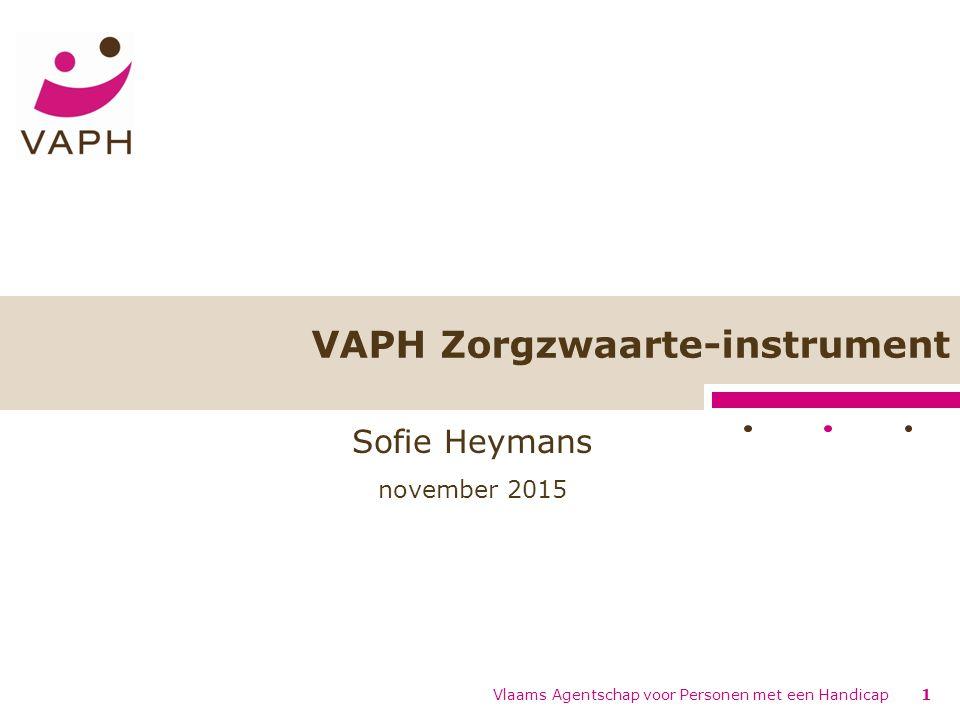 VAPH Zorgzwaarte-instrument