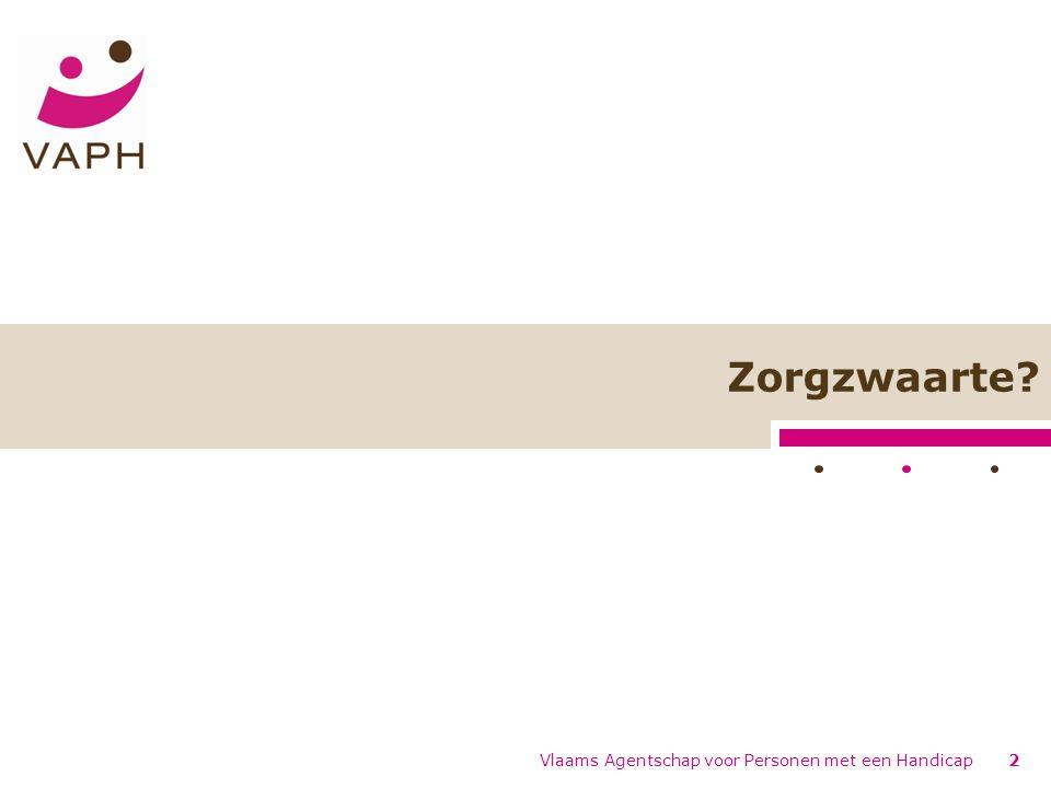 Zorgzwaarte Vlaams Agentschap voor Personen met een Handicap