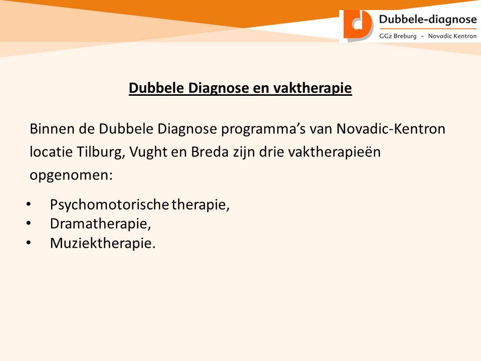 Dubbele Diagnose en vaktherapie