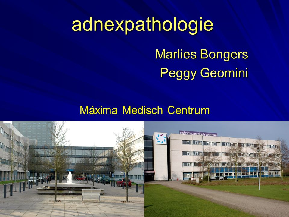 Marlies Bongers Peggy Geomini