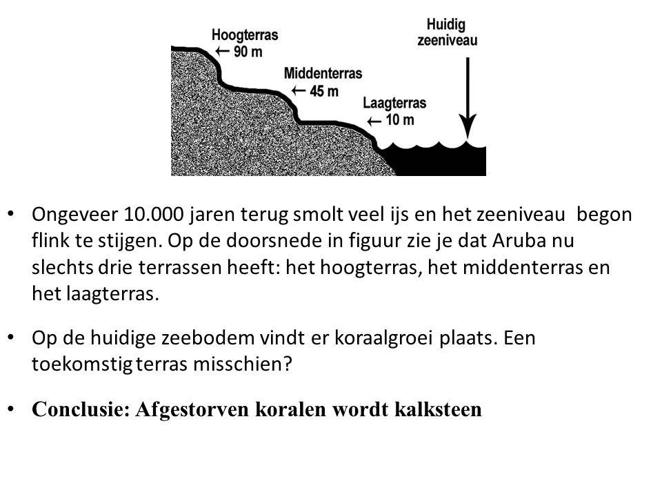 Ongeveer 10.000 jaren terug smolt veel ijs en het zeeniveau begon flink te stijgen. Op de doorsnede in figuur zie je dat Aruba nu slechts drie terrassen heeft: het hoogterras, het middenterras en het laagterras.