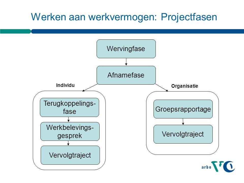 Werken aan werkvermogen: Projectfasen