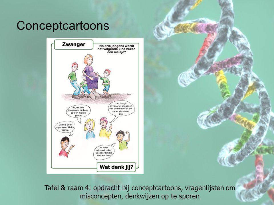 Conceptcartoons Tafel & raam 4: opdracht bij conceptcartoons, vragenlijsten om misconcepten, denkwijzen op te sporen.