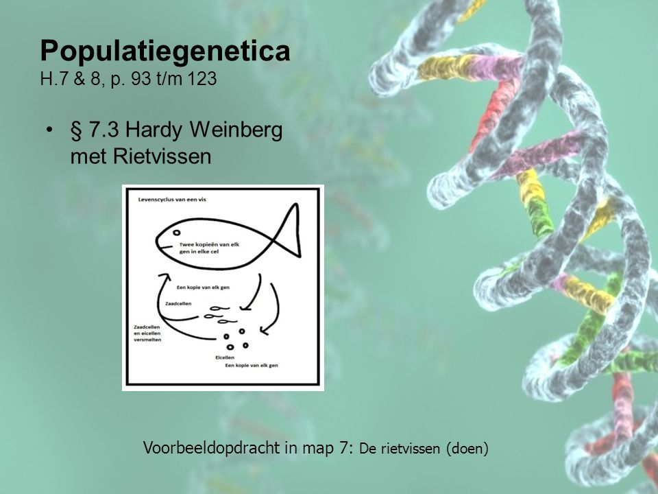 Populatiegenetica H.7 & 8, p. 93 t/m 123