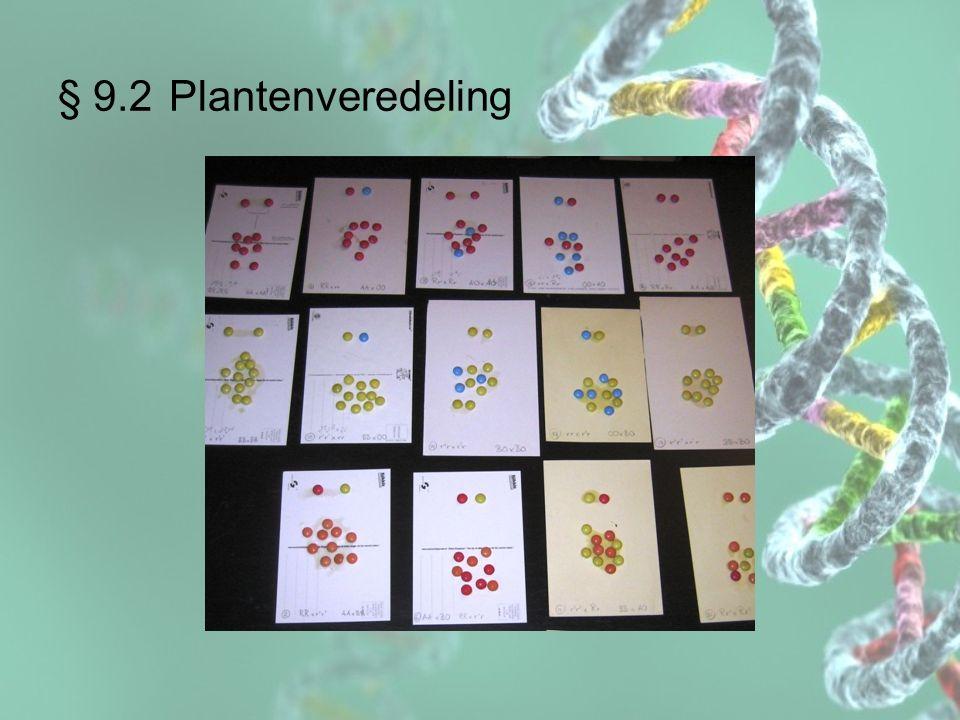 § 9.2 Plantenveredeling Welke concept(en) zijn centraal in de opdracht Denk je dat deze opdracht het leren ondersteunt