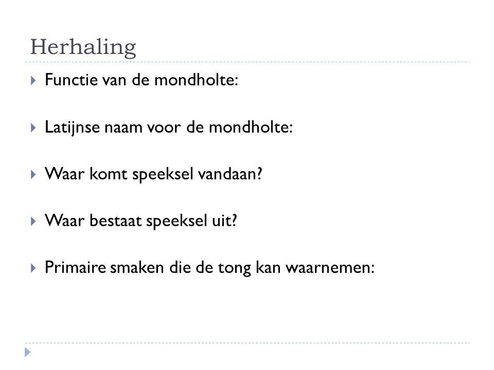 Herhaling Functie van de mondholte: Latijnse naam voor de mondholte: