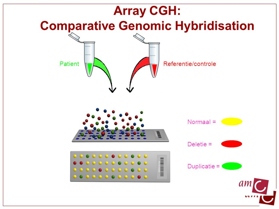 Array CGH: Comparative Genomic Hybridisation