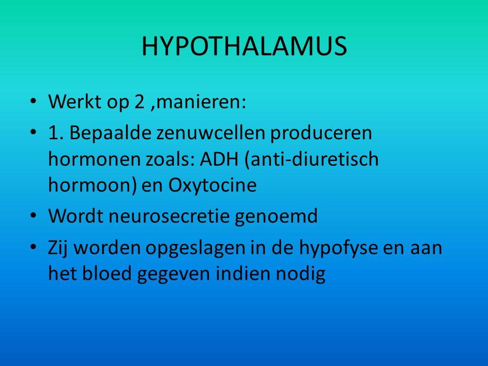 HYPOTHALAMUS Werkt op 2 ,manieren: