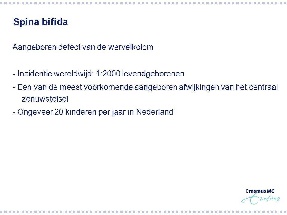 Spina bifida Aangeboren defect van de wervelkolom