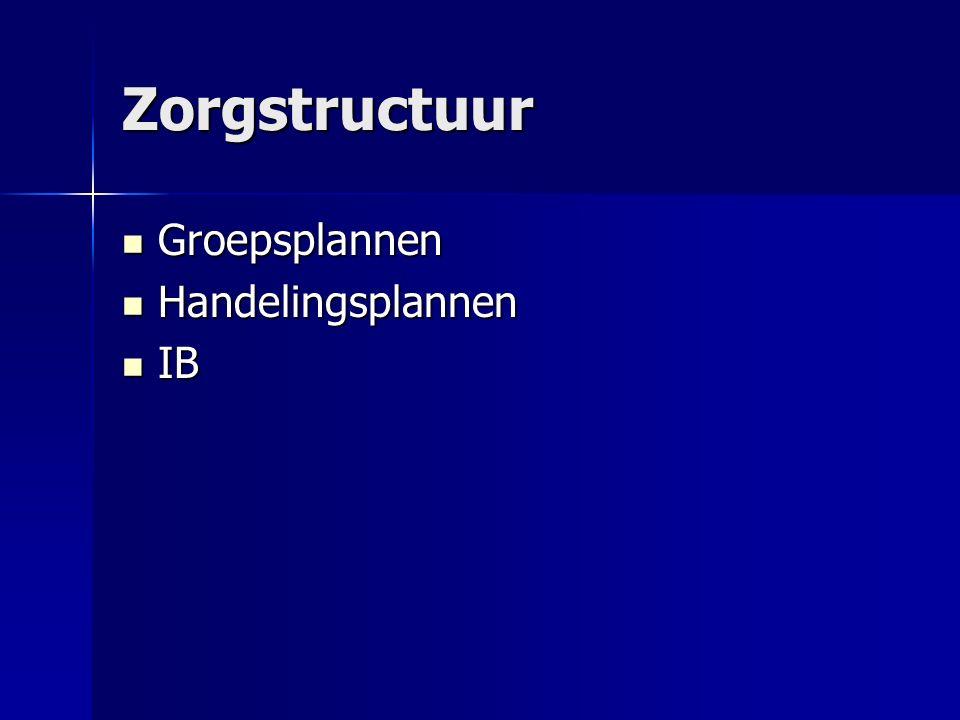 Zorgstructuur Groepsplannen Handelingsplannen IB